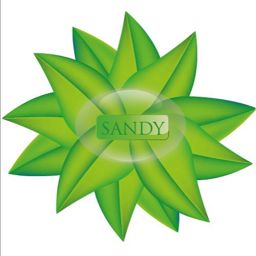 daun sandy